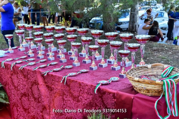Ponyadi d'Abruzzo 2020