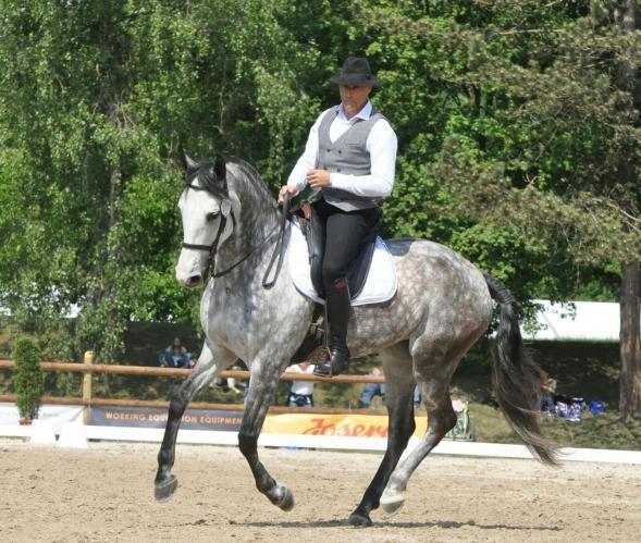 Selezione per i mondiali del cavaliere campano Canio Santomauro