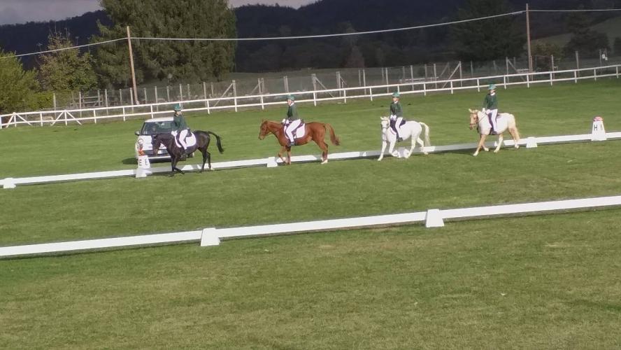 SAGGIO_SCUOLE_2019_RONDINELLA_7