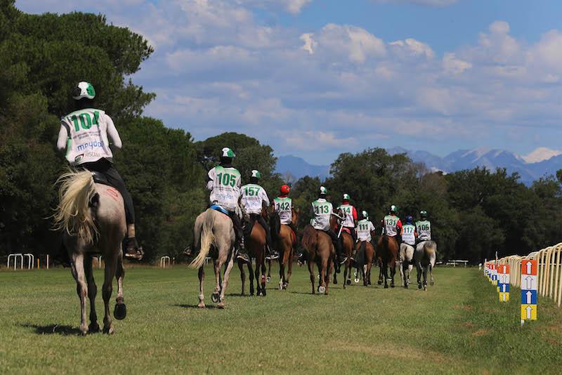 Fise Calendario.Federazione Italiana Sport Equestri On Line Il Regolamento