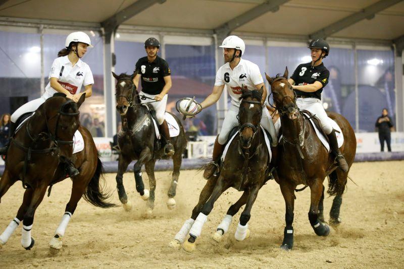 Horse Ball Verona Grassia