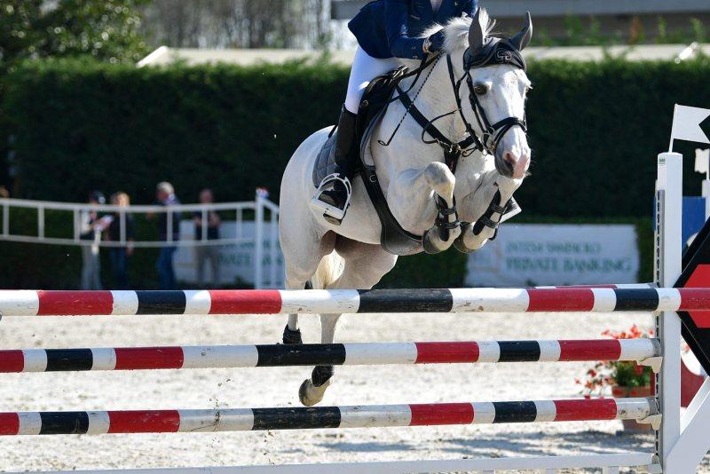 Generica Pony Sasso Fotogr