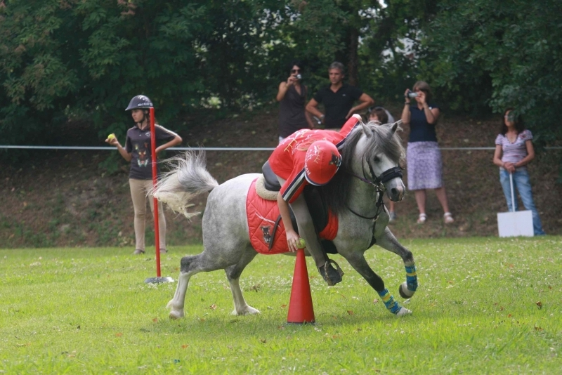 Cervia Pony Games