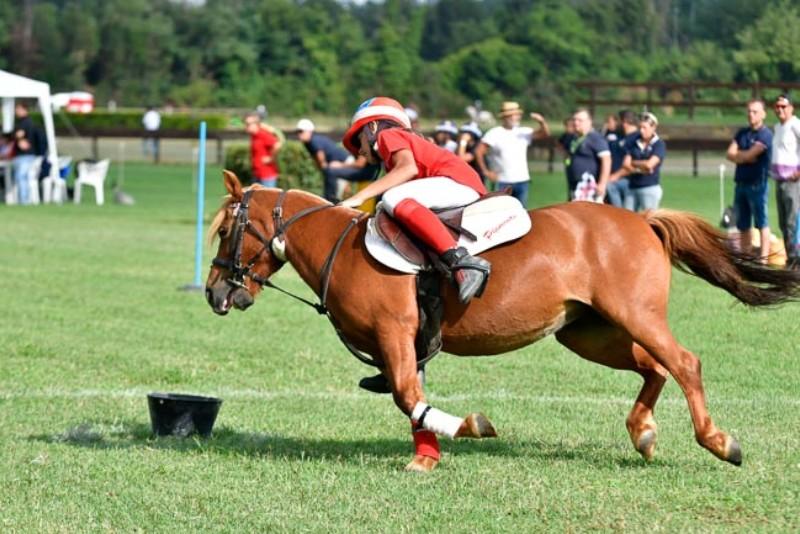 Ponyadi Villanti 18