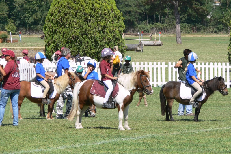 Ponyadi Tor di Quinto Pony