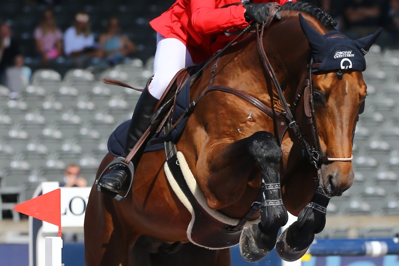 Federazione Italiana Sport Equestri   Apertura calendario