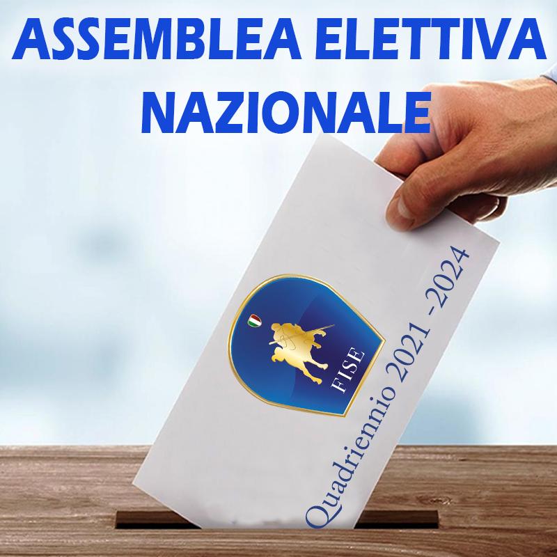 Federazione Italiana Sport Equestri   Comitato Regionale Marche   Home