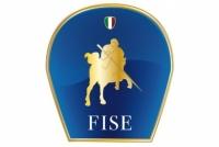 LogoFISE