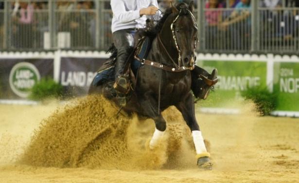 FORMAZIONE: Esami Tecnici equitazione americana