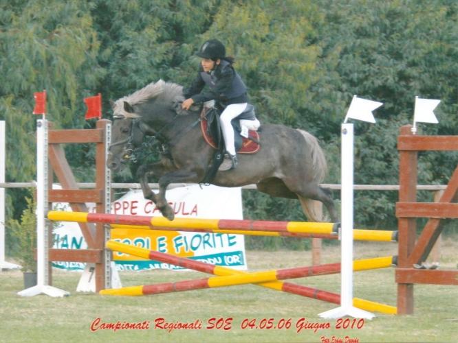 campreg10 (22)