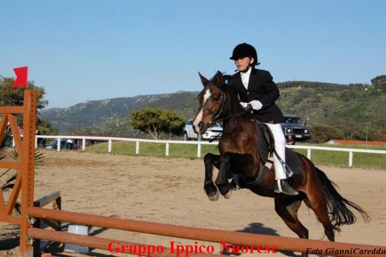 Il Cavallo Un Amore che guarisce (11-12 mag 2012)