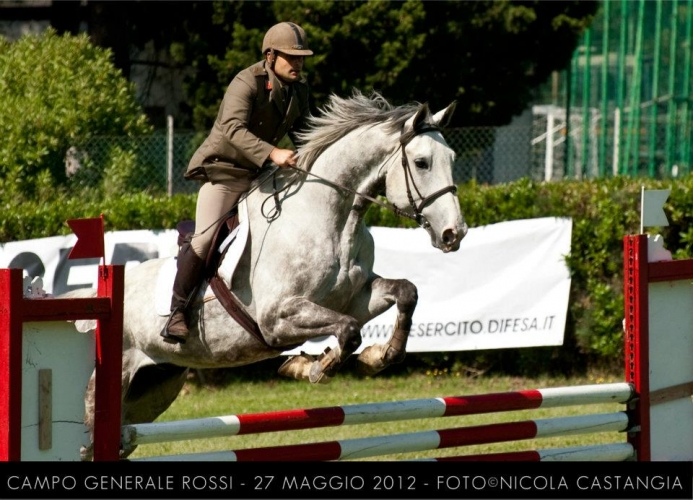 Saltaesercito (27 mag 2012)